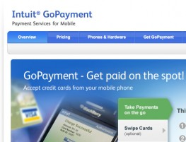 intuit web small